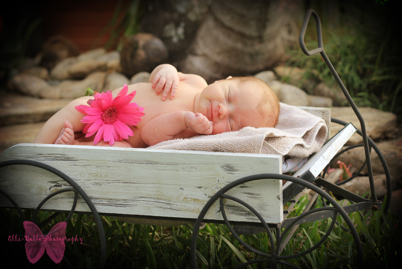 Elli-Belle Photography - Palm Beach County Florida Family Photographer